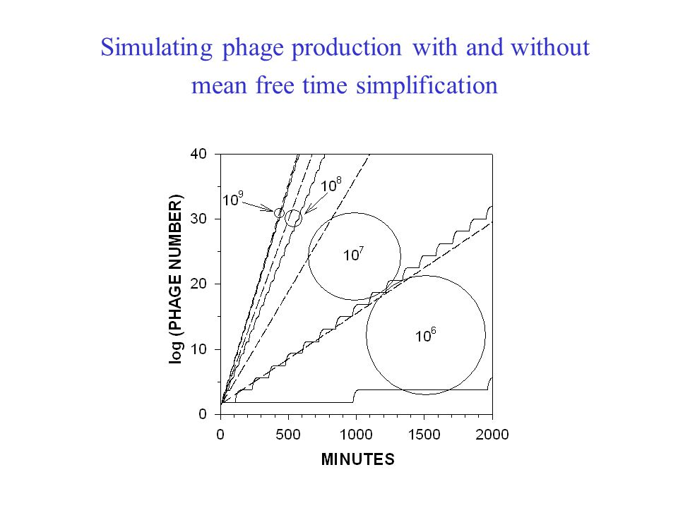 Simulating phage production with and without mean free time simplification