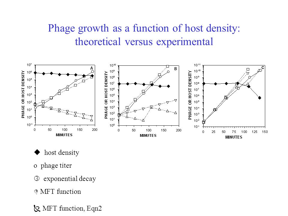 Phage growth as a function of host density: theoretical versus experimental