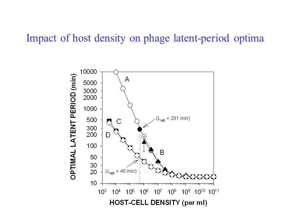 Impact of host density on phage latent-period optima