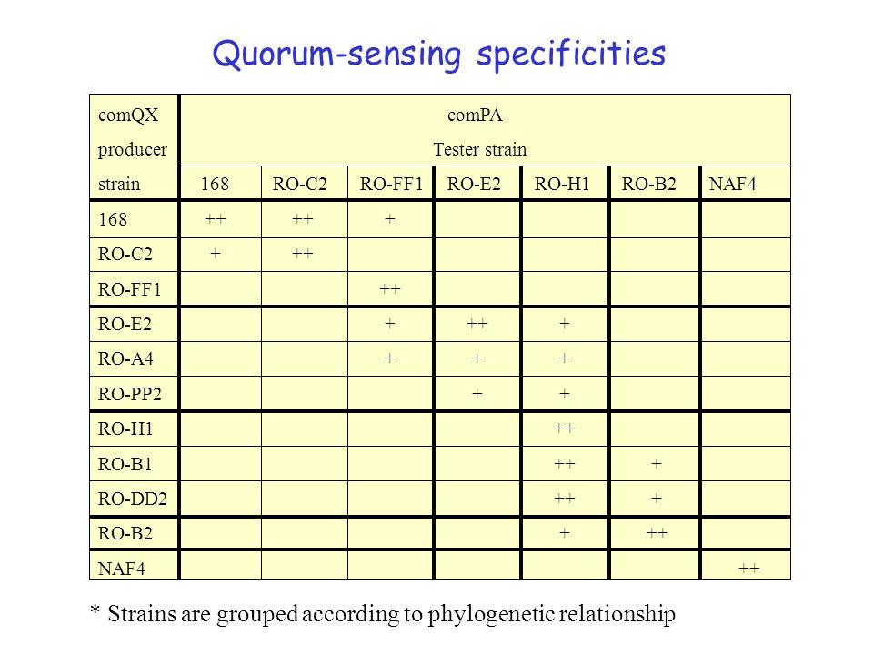 Quorum-sensing specificities