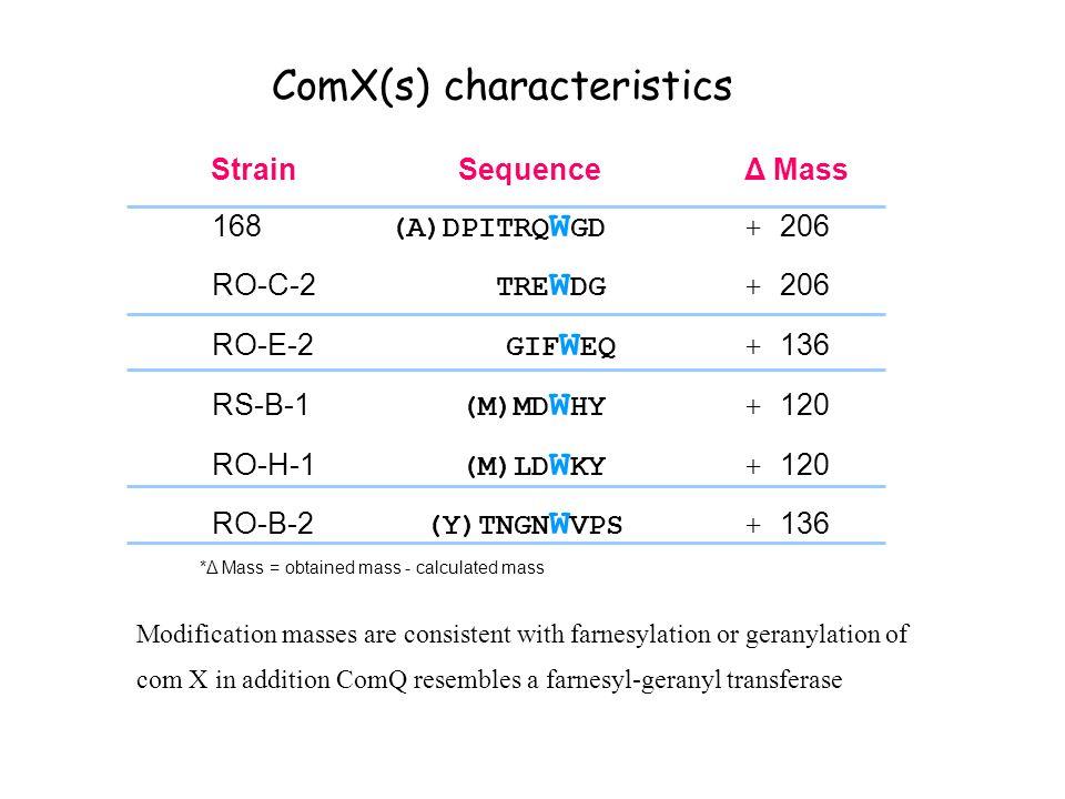 ComX(s) characteristics