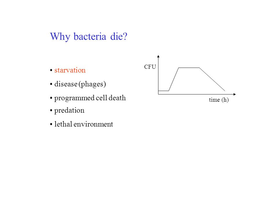 Why bacteria die starvation disease (phages) programmed cell death