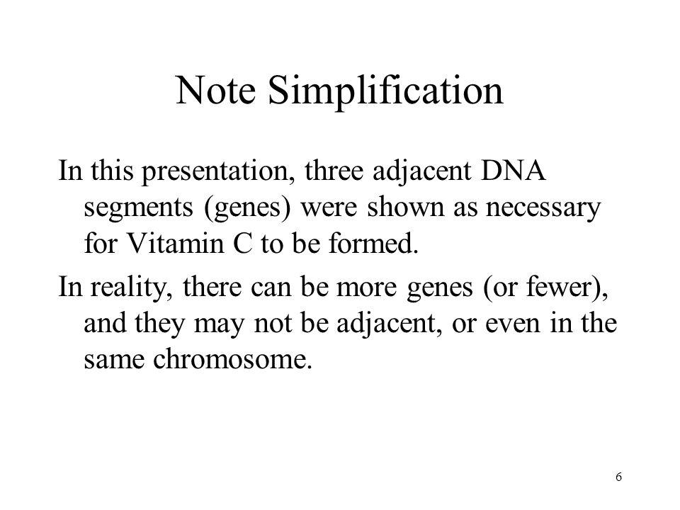 Note Simplification In this presentation, three adjacent DNA segments (genes) were shown as necessary for Vitamin C to be formed.