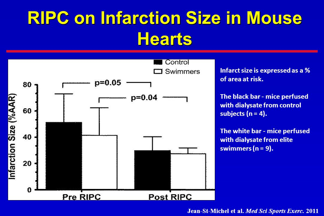 RIPC on Infarction Size in Mouse Hearts