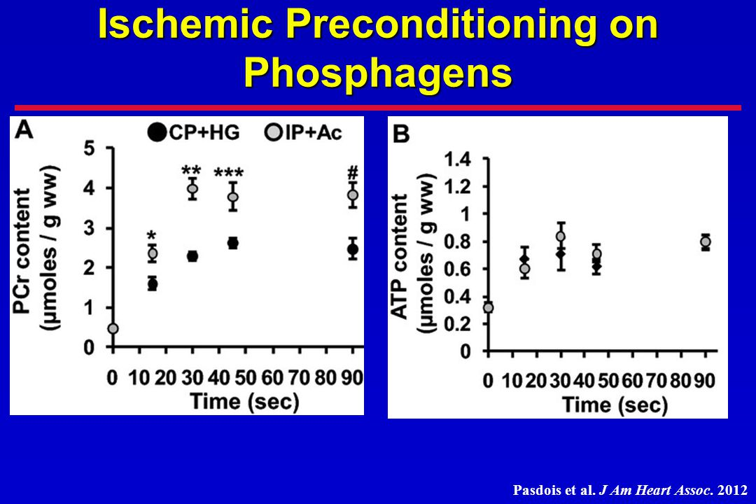 Ischemic Preconditioning on Phosphagens
