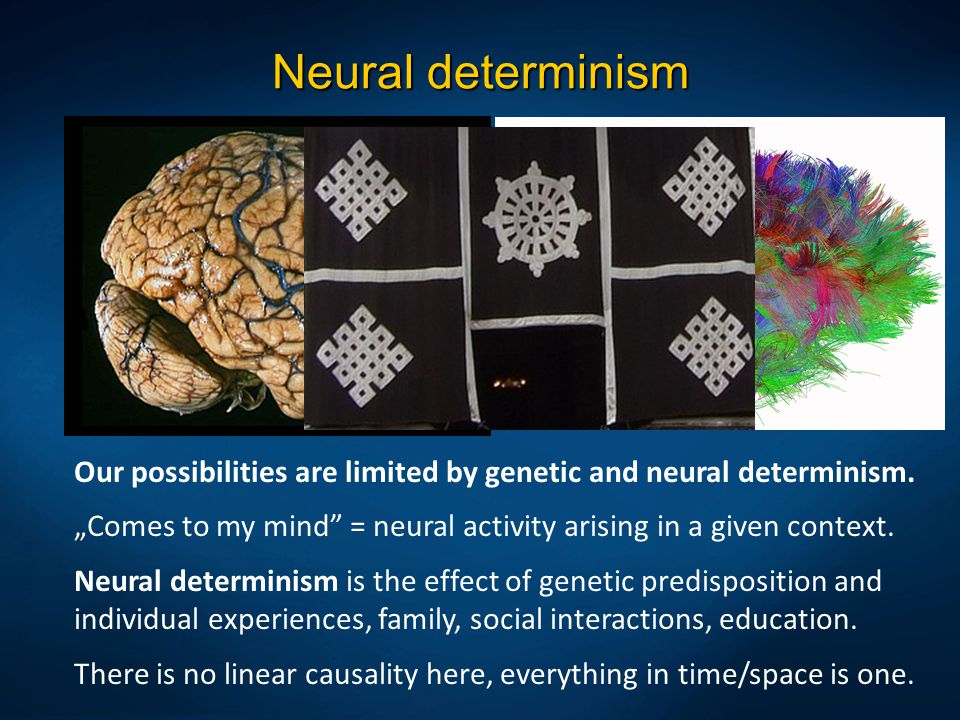 """Neural determinism Our possibilities are limited by genetic and neural determinism. """"Comes to my mind = neural activity arising in a given context."""