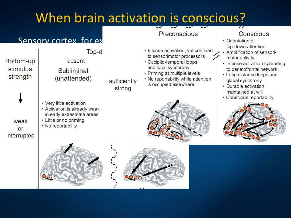 When brain activation is conscious