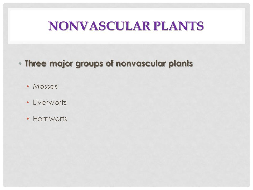 Nonvascular Plants Three major groups of nonvascular plants Mosses