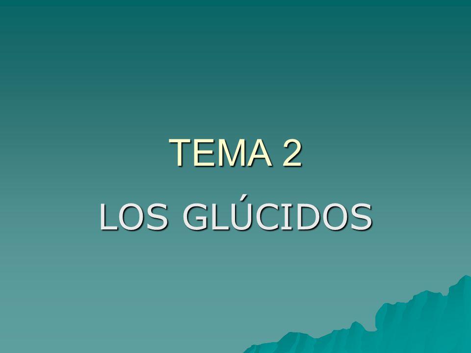 TEMA 2 LOS GLÚCIDOS
