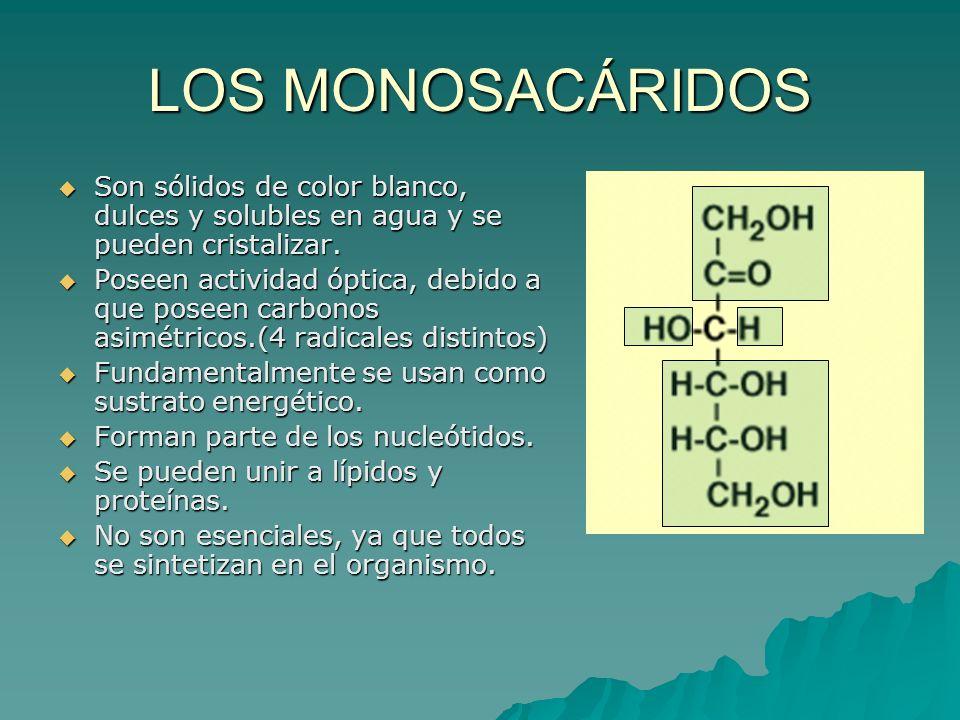 LOS MONOSACÁRIDOS Son sólidos de color blanco, dulces y solubles en agua y se pueden cristalizar.