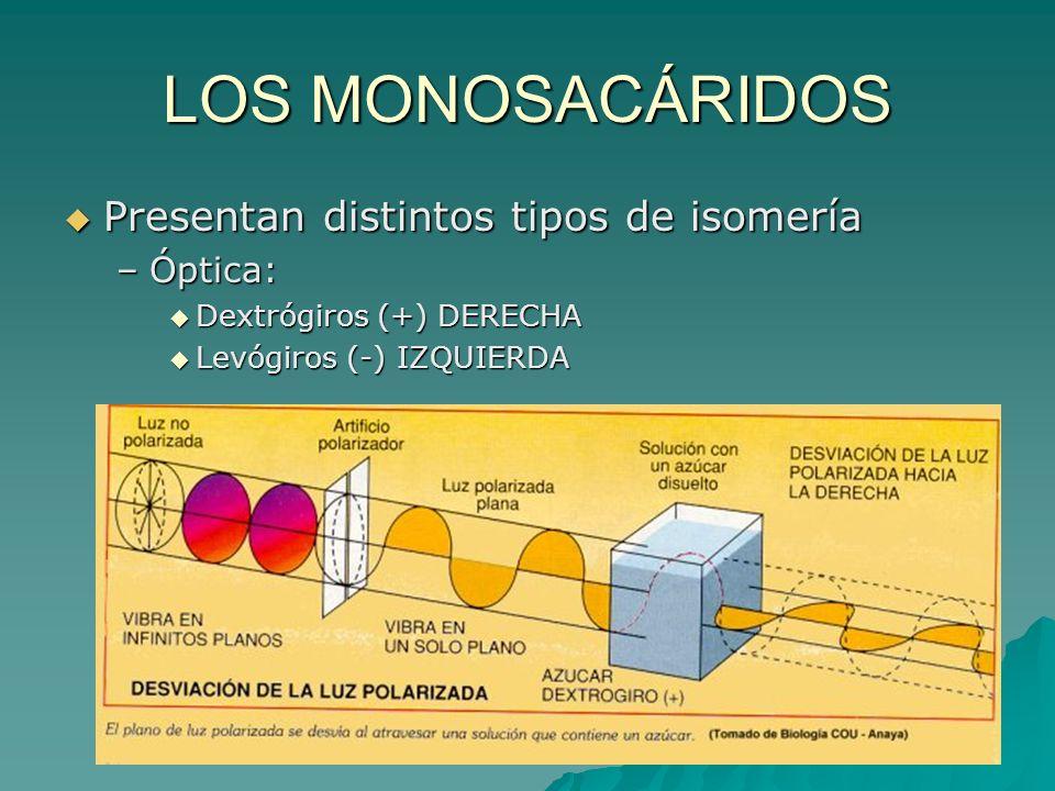 LOS MONOSACÁRIDOS Presentan distintos tipos de isomería Óptica: