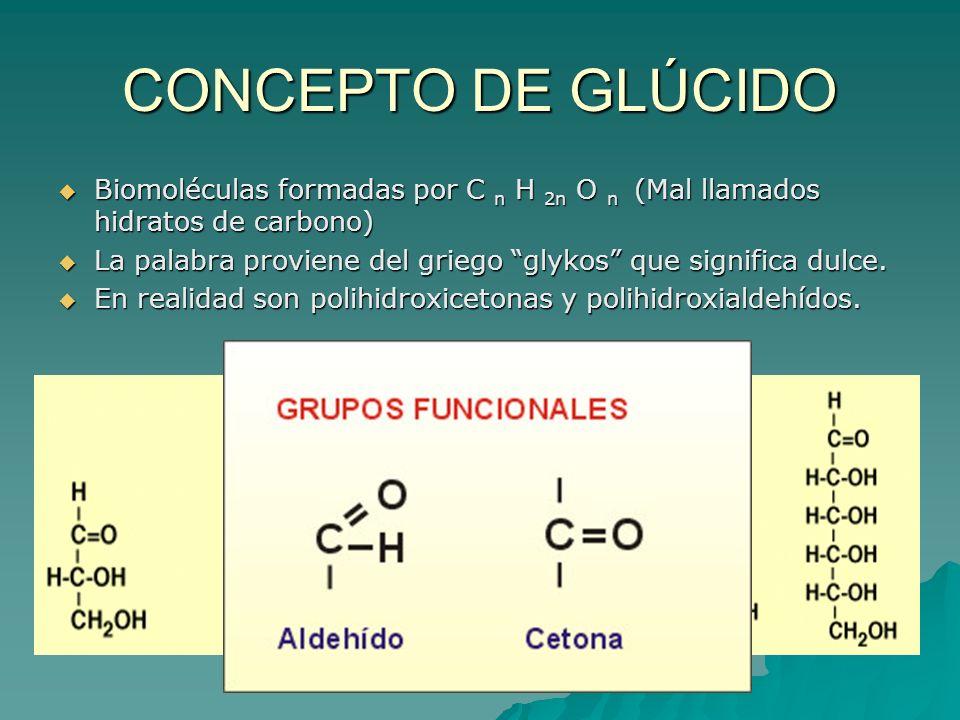 CONCEPTO DE GLÚCIDO Biomoléculas formadas por C n H 2n O n (Mal llamados hidratos de carbono)