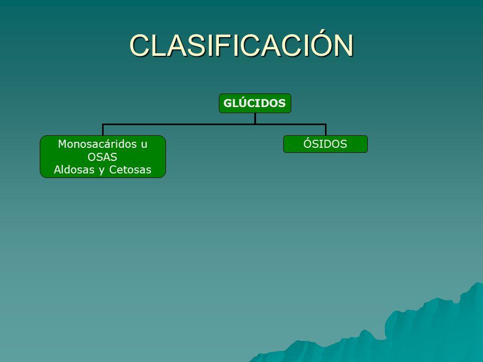 CLASIFICACIÓN GLÚCIDOS Monosacáridos u OSAS Aldosas y Cetosas ÓSIDOS