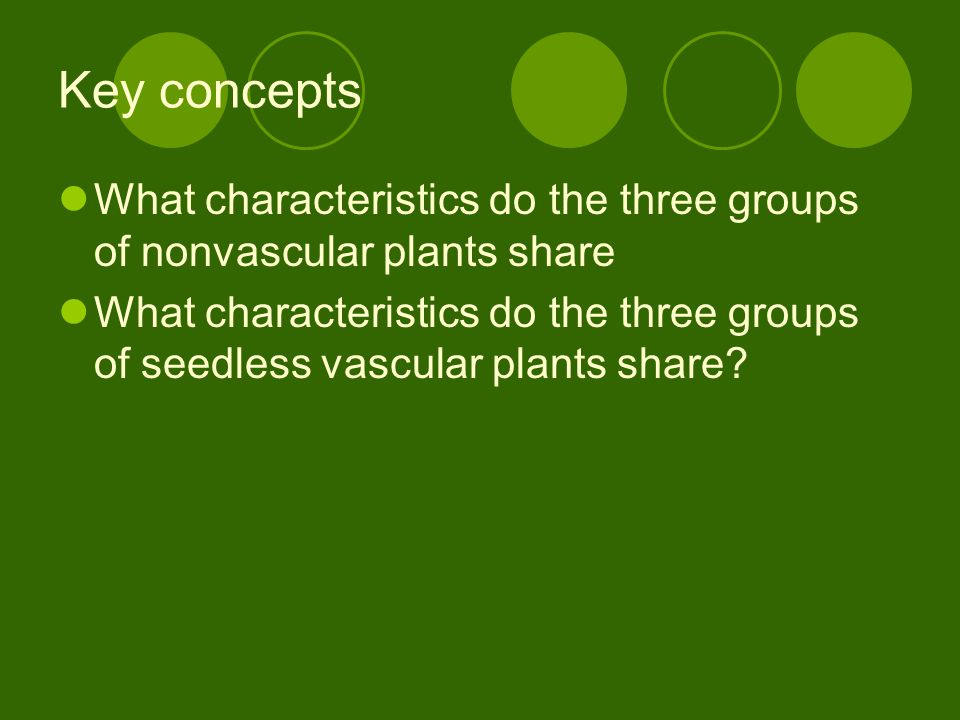 Key concepts What characteristics do the three groups of nonvascular plants share.