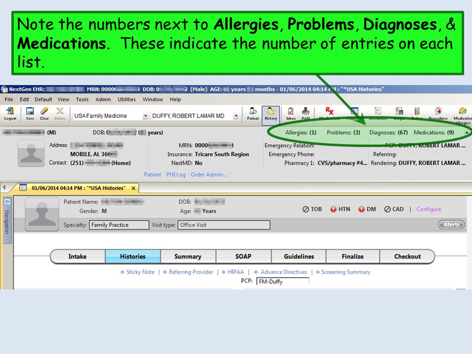 Note the numbers next to Allergies, Problems, Diagnoses, & Medications