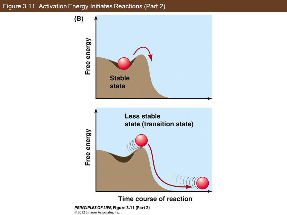 Figure 3.11 Activation Energy Initiates Reactions (Part 2)