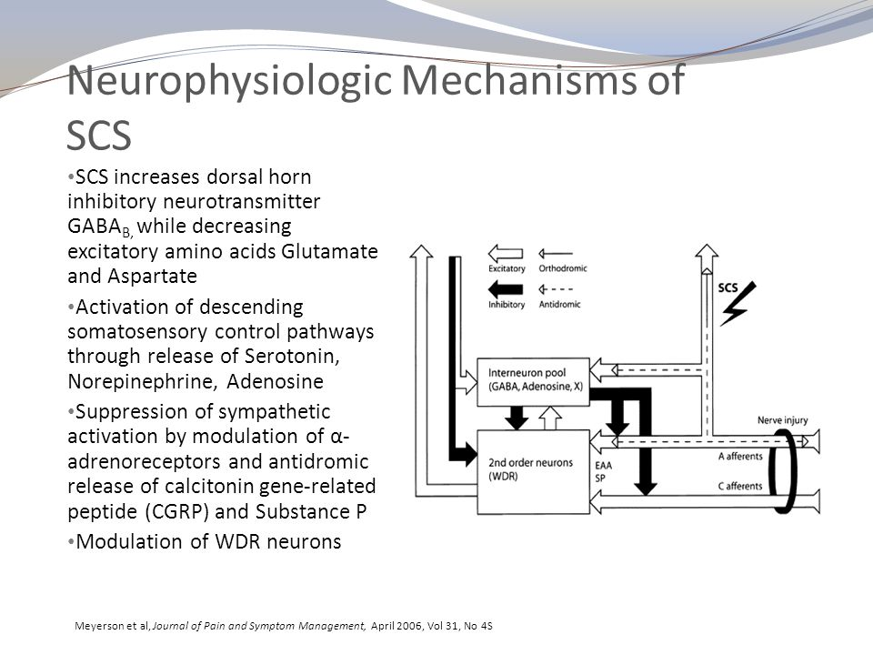Neurophysiologic Mechanisms of SCS