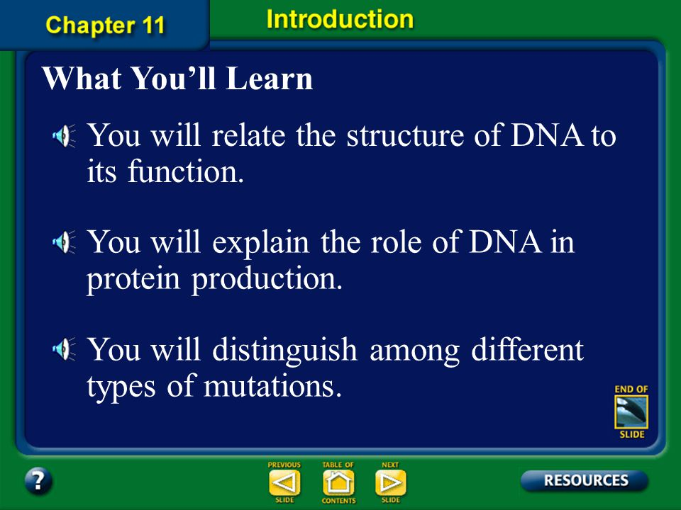 You will relate the structure of DNA to its function.