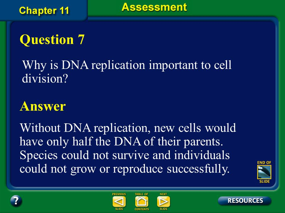 Question 7 Answer Why is DNA replication important to cell division