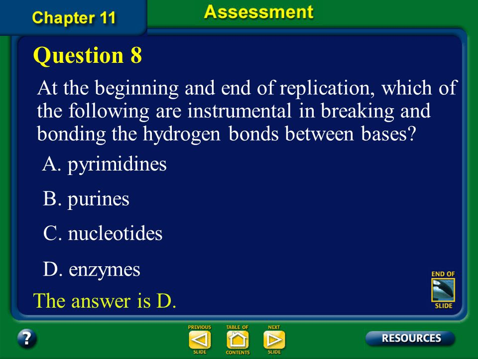 Question 8 At the beginning and end of replication, which of the following are instrumental in breaking and bonding the hydrogen bonds between bases