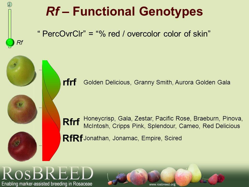 Rf – Functional Genotypes