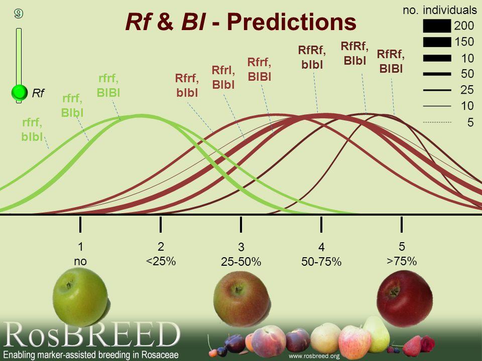 Rf & Bl - Predictions 9 no. individuals RfRf, Blbl RfRf, blbl