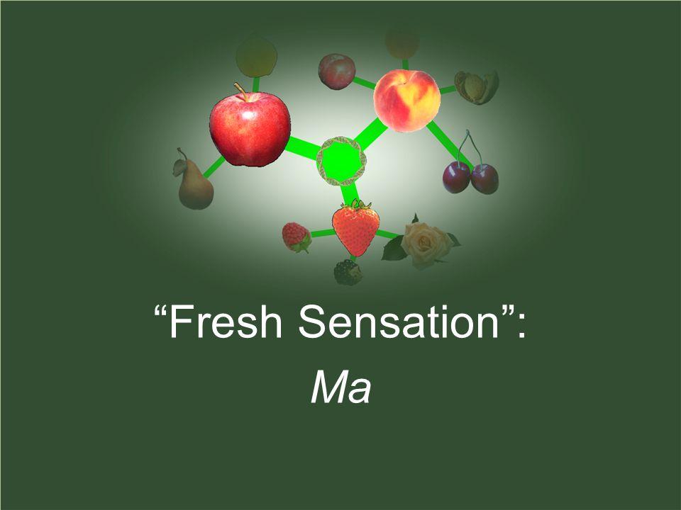 Fresh Sensation : Ma