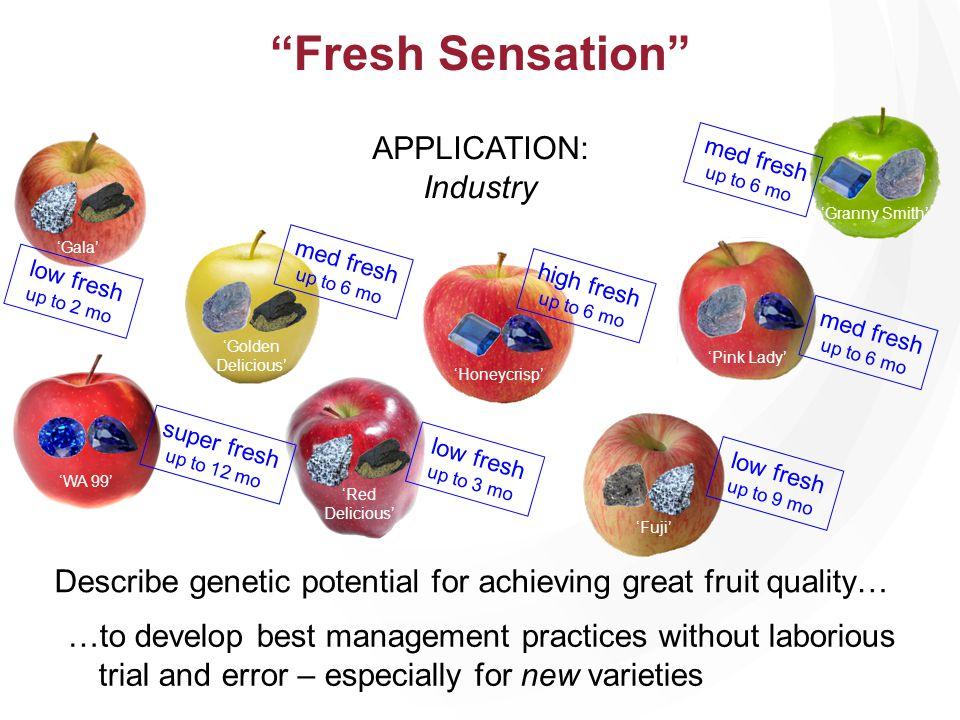 Fresh Sensation APPLICATION: Industry