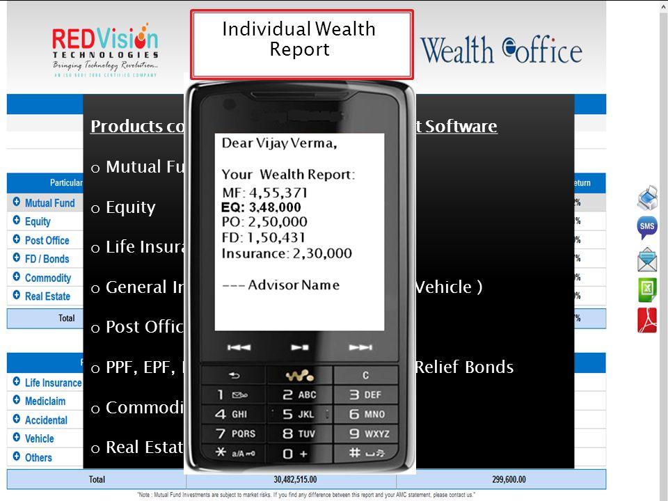 Individual Wealth Report