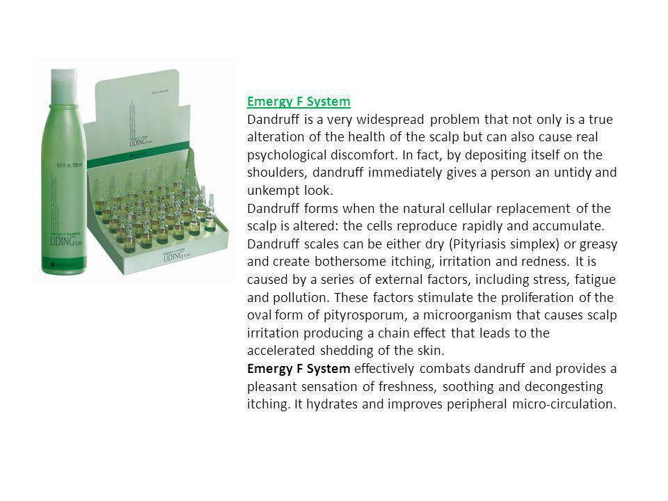Emergy F System