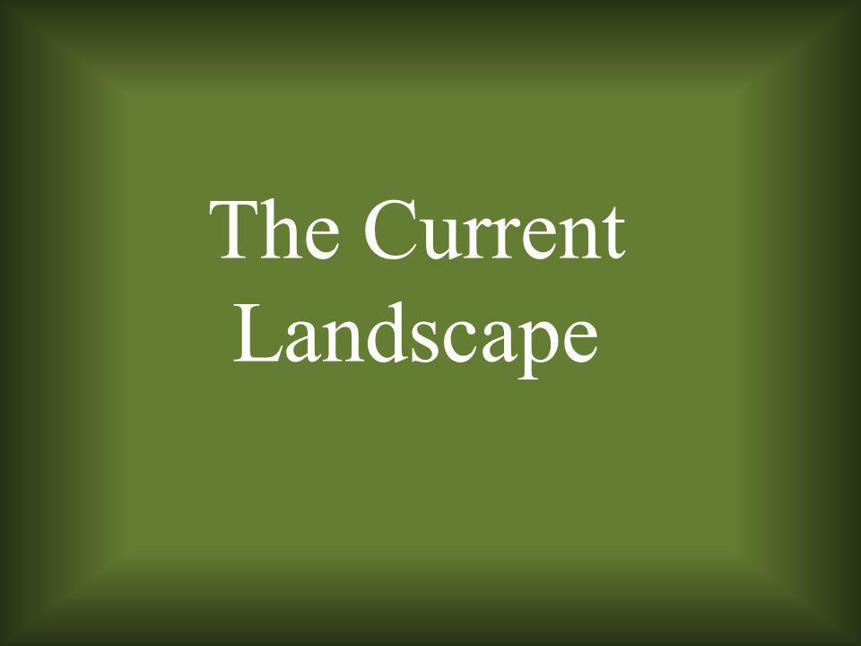 The Current Landscape