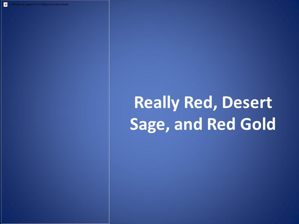 Really Red, Desert Sage, and Red Gold