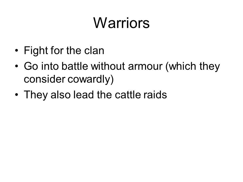 Warriors Fight for the clan