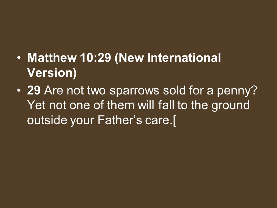 Matthew 10:29 (New International Version)