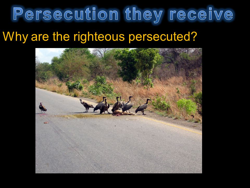 Persecution they receive