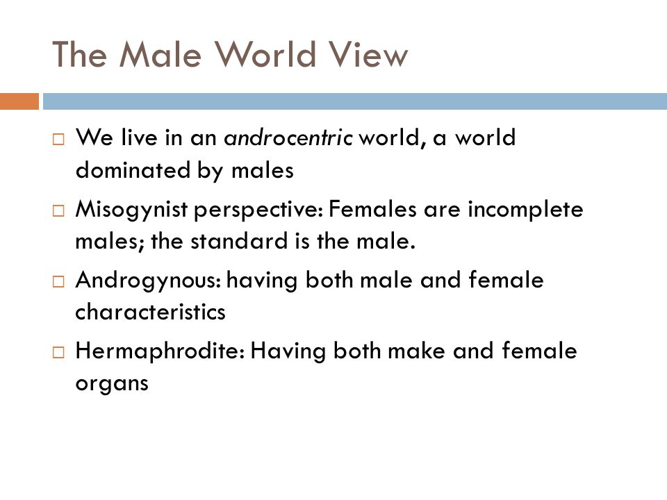 The Male World View We live in an androcentric world, a world dominated by males.