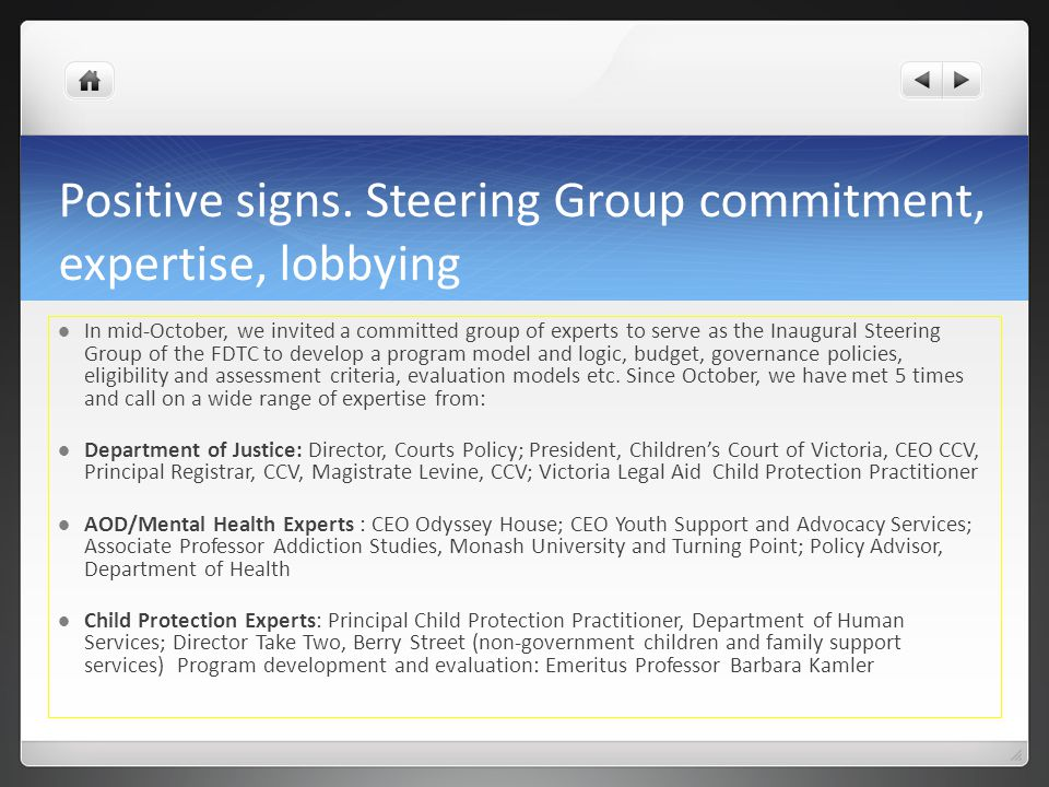 Positive signs. Steering Group commitment, expertise, lobbying
