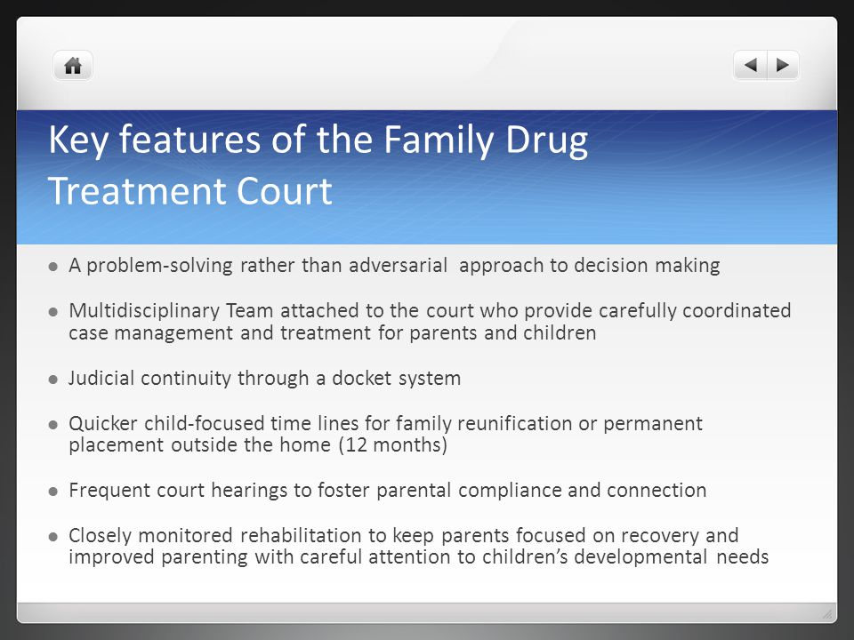Key features of the Family Drug Treatment Court