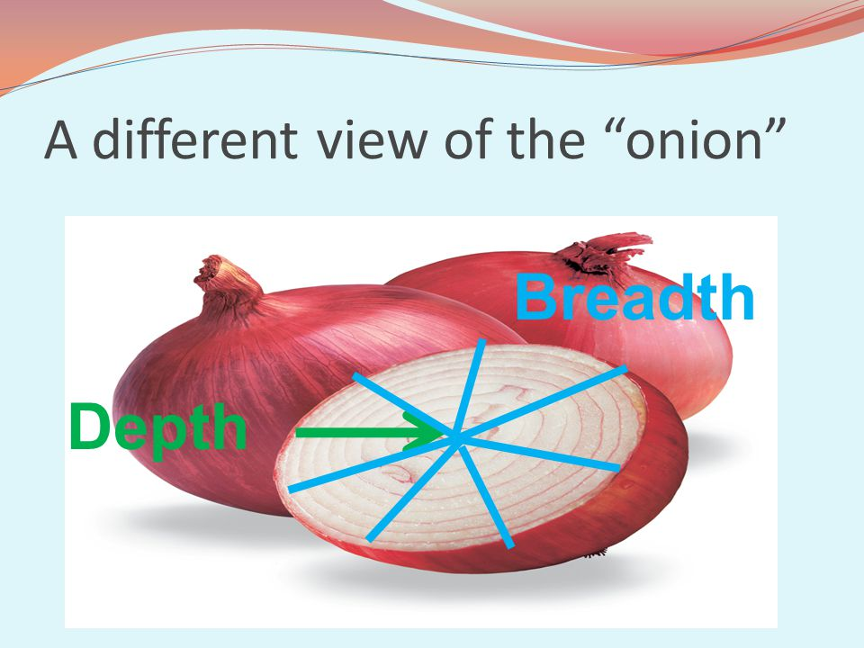 A different view of the onion