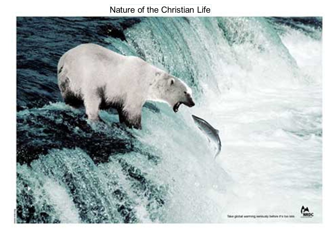 Nature of the Christian Life