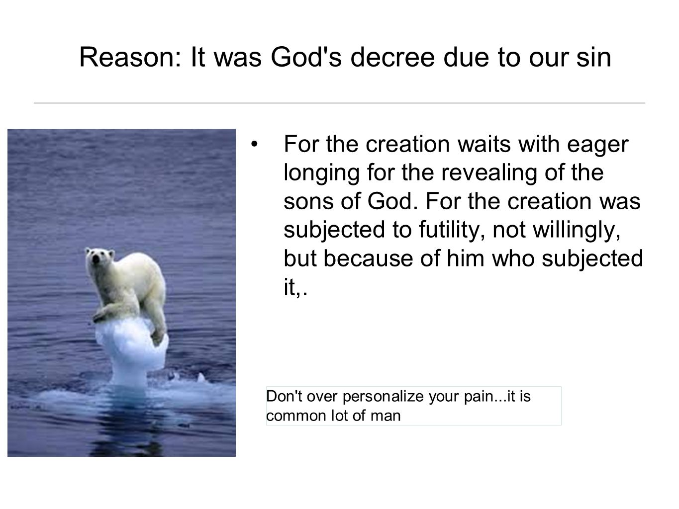 Reason: It was God s decree due to our sin