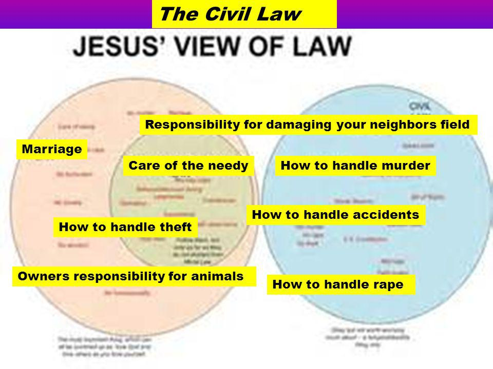The Civil Law Responsibility for damaging your neighbors field
