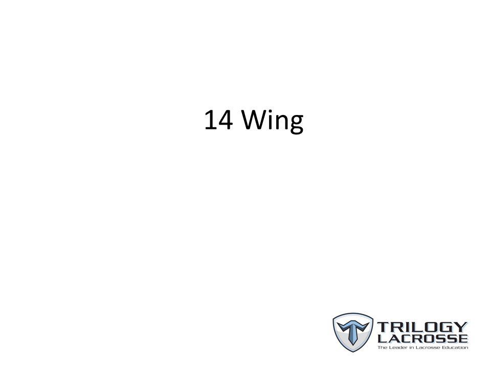 14 Wing