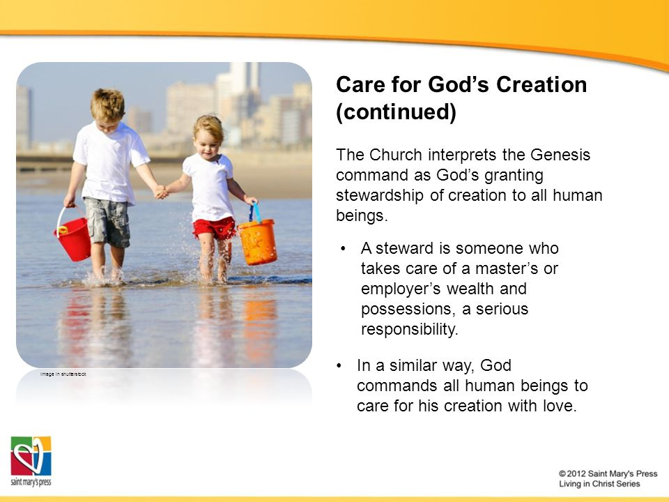 Care for God's Creation (continued)