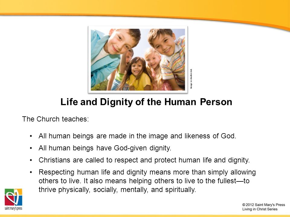 Life and Dignity of the Human Person