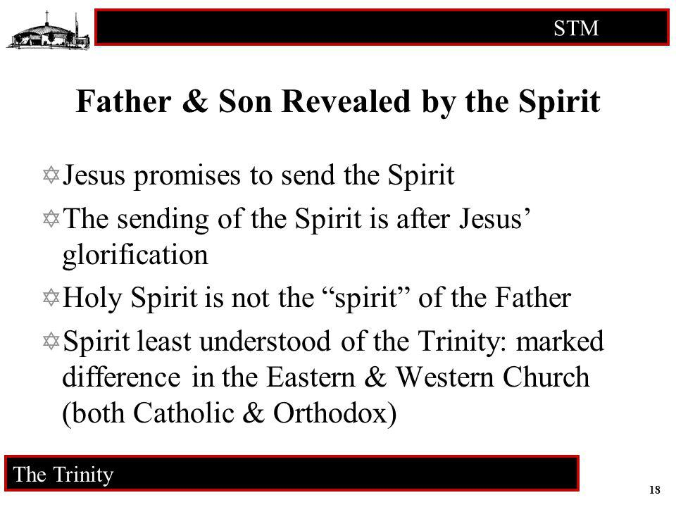 Father & Son Revealed by the Spirit