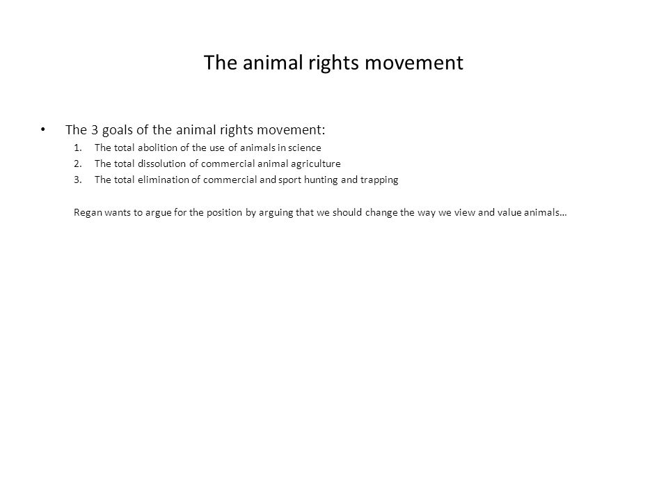 The animal rights movement