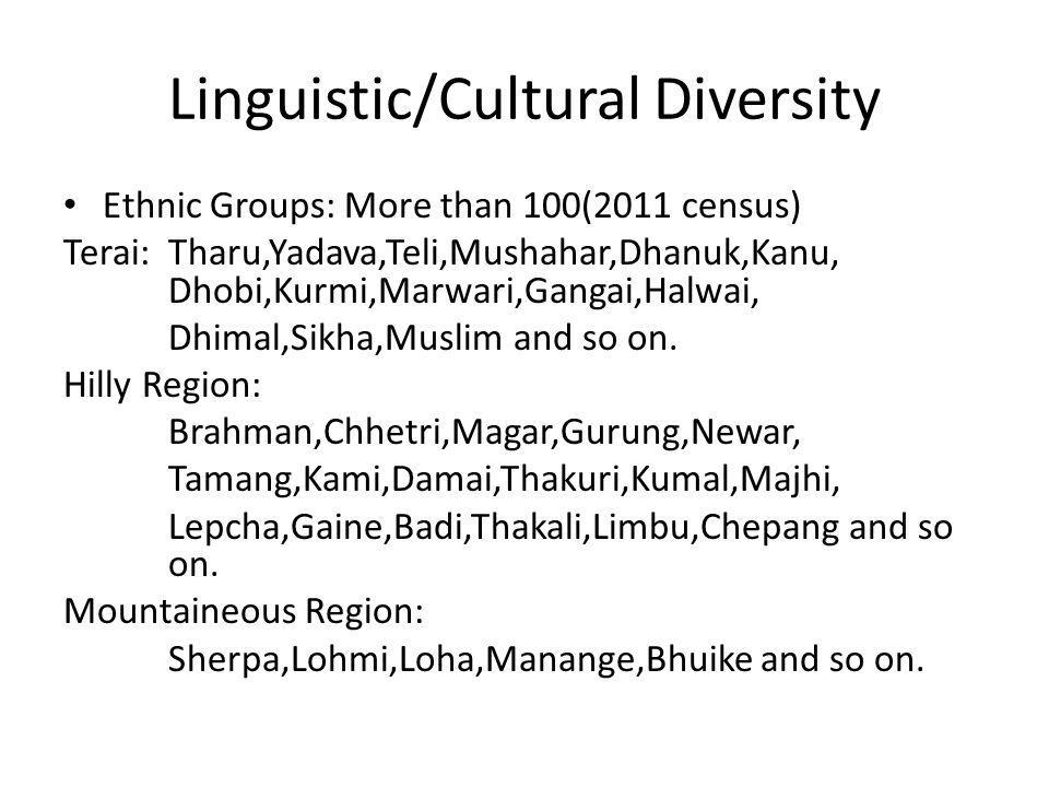 Linguistic/Cultural Diversity