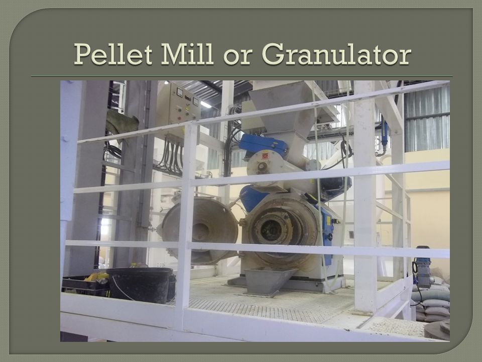 Pellet Mill or Granulator