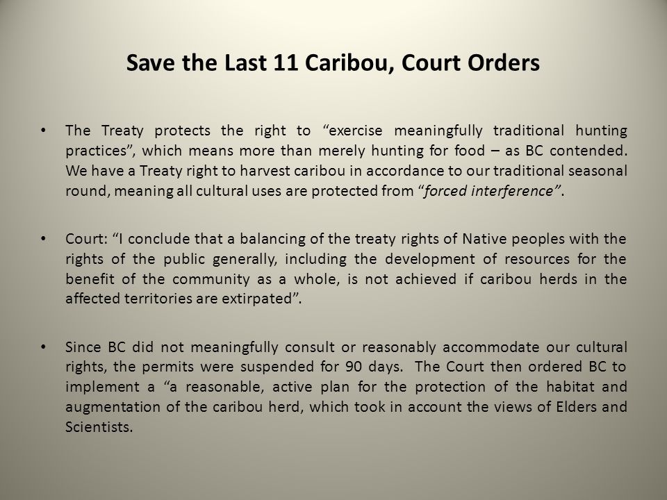 Save the Last 11 Caribou, Court Orders